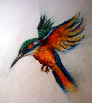 Kingfisher by 2B-pencils