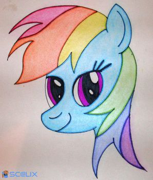 Rainbow Dash - Head by scalixcz
