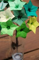 Shades of Green Star Flowers by lisadeng