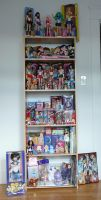 Sailor Moon Collection I by SakkysSailormoonToys