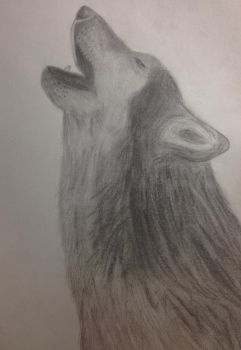 Howling Wolf by Swordaive