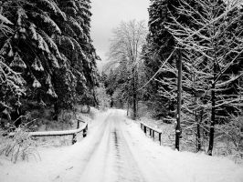 The White Way To Go by ShawEye