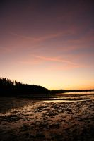 sunset on the swamp by eythan