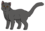 Yellowfang by acornheart465