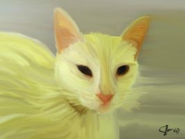 White Cat new version by shiec