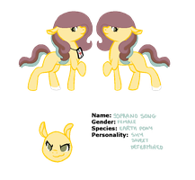 Soprano Song Ref. Sheet by acervine