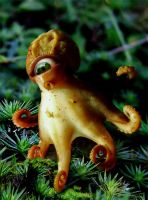 One Eyed Rainforest Octopus by ozplasmic