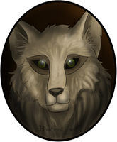 Neopets Request: Anzwah the Werelupe by Blesses