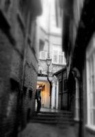 In the alley way . by velar1