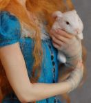 Alice in Wonderland and rabbit by polymer-people