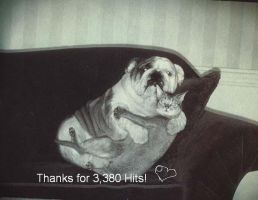 THANX FOR 3380 HITS by Keiko-san