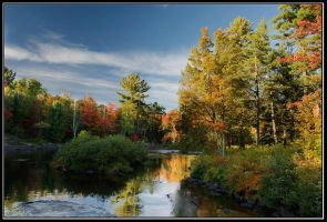 Evening at Oxtongue River2 by IgorLaptev