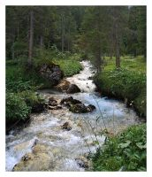 Mountain Forest 05 by cyrano82