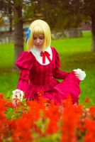 APH: Red flowers by Hitooomi