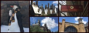 The Wizarding World of Harry Potter by fleur-de-Lis4444