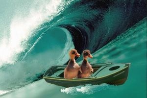 Duck Surf by HrhLaura
