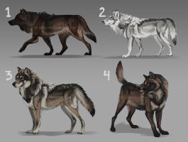 Wow WOLF ADOPTS, auction: CLOSED by KFCemployee