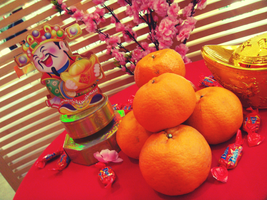 Mandarin Oranges for New Year by babym30w