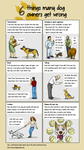6 Things many dog owners get wrong by Ricardo73