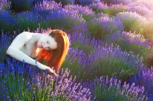 girl in the lavender by Boas73