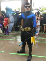 Anime Los Angeles 2015 Nightwing by Demon-Lord-Cosplay