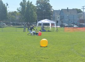 2014 Dog Festival, Treiball Session 3 by Miss-Tbones
