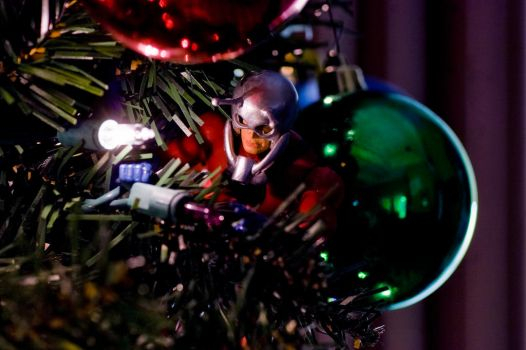 Trimming The Tree and Lighting The Lights by Batced