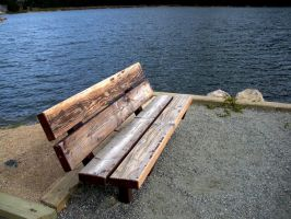 a seat by the lake by EnforcedCrowd