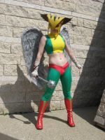 Hawkgirl Costume by msventress