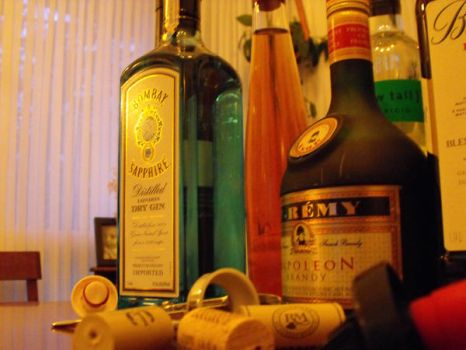 Alcoholic Beverages 2 by hahafunny827