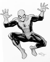 Spidey commish by ReillyBrown