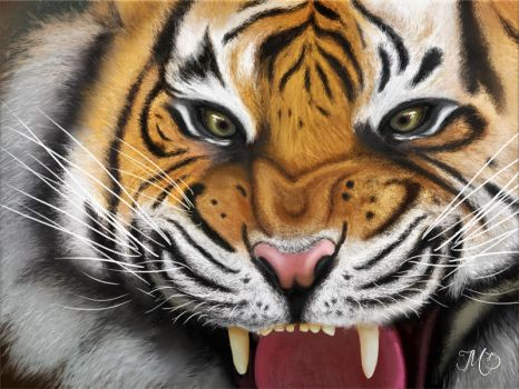 Angry Tiger - Digital Painting by Trek25