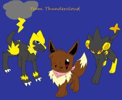 Team Thundercloud Cover page by cluelessAvian