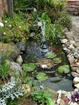 Pond Upgrade May 2016 by Thelma1