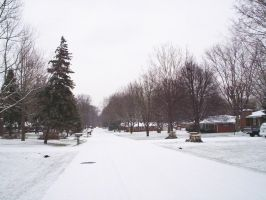 Snowy Neighborhood by Mershell