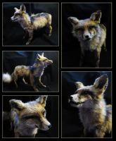 Freak mountead fox FOR SALE/TRADE by WolfRoad
