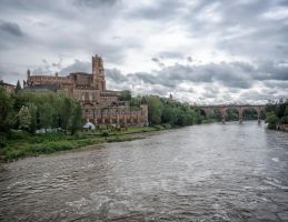 Albi by rhipster