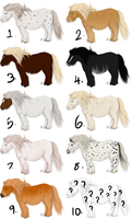 Shetland Draw/ Point Adopts! by emmy1320