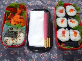 Bento 6 close up by TheGreyPhoenix