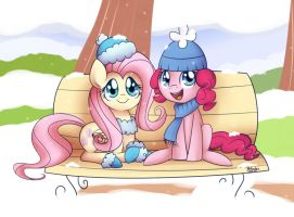 Christmas - Pinkie and Fluttershy by Solar-Slash