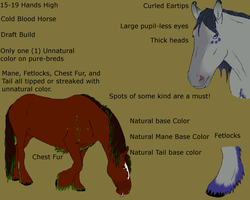 Galax Horse Breed Sheet- UPDATED by MatsiOfErebor
