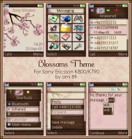 Blossoms Theme by ami-89