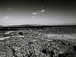 B and View Taken Overlooking Newton Beach May 2012 by welshrocker