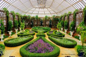 Phipps Conservatory 7 by GlassHouse-1
