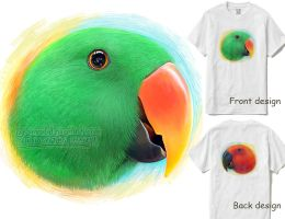 Eclectus parrot by emmil