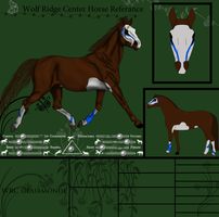 Clairmonde Reference *SOLD* by Thoroughbreds4Me