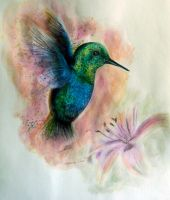 Hummingbird by aVegetarian