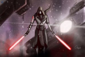 Star Wars : Sith by RTOneBlueWolf