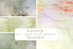 Visionary by innocentLexys