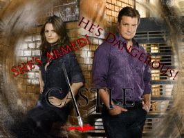 Fillion Fans Contest Entry by PrincessKiara2811